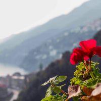 The Amalfi Coast  (Costiera Amalfitana)