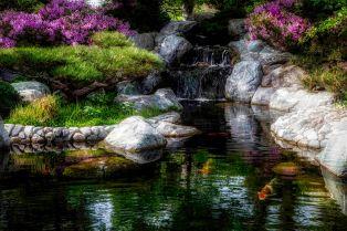 Lilac Pond